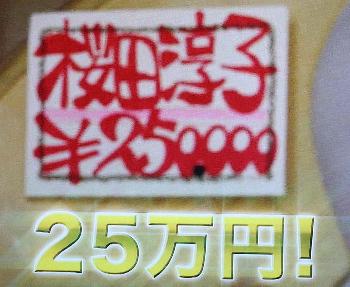 淳子パネル2.jpg