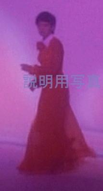 百恵ドレスE2.jpg