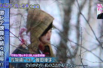 雪の祭典花物語.jpg