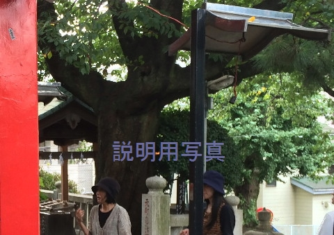 kはらぺこ同志_5_0080_ロケ地_20140830.jpg