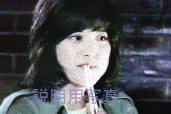 3あこがれ共同隊.jpg