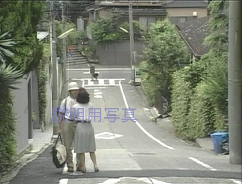 A麗子の決闘_0020.jpg