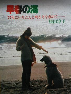 早春の海(1977).jpg